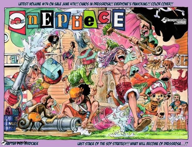 Bird Cage One Piece